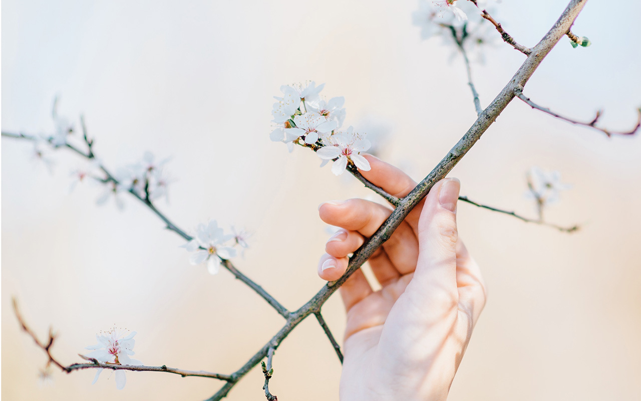 Top 5 Spring Women's Goods from AliExpress